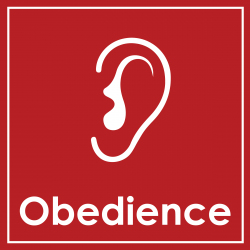 3 - Obedience